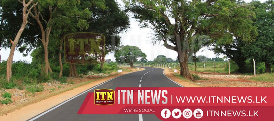 Replanting of trees from Kadawatha to Nittambuwa