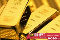 Gold Biscuits found at Katunayake Airport