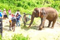 SPECIAL MEDICAL TEAM TO TREAT RAJU