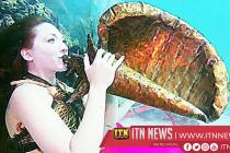 Florida Keys music fest takes reef awareness underwater