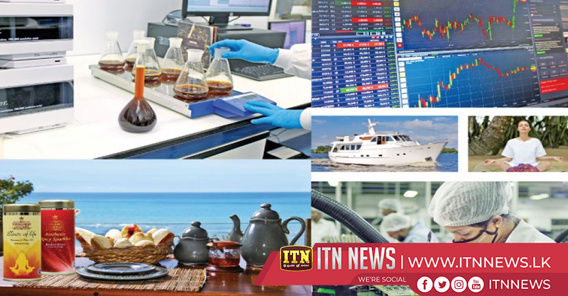 The Cabinet approved the National Export Strategy (NES)