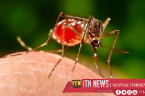 Public cautioned to be alert on the dengue epidemic