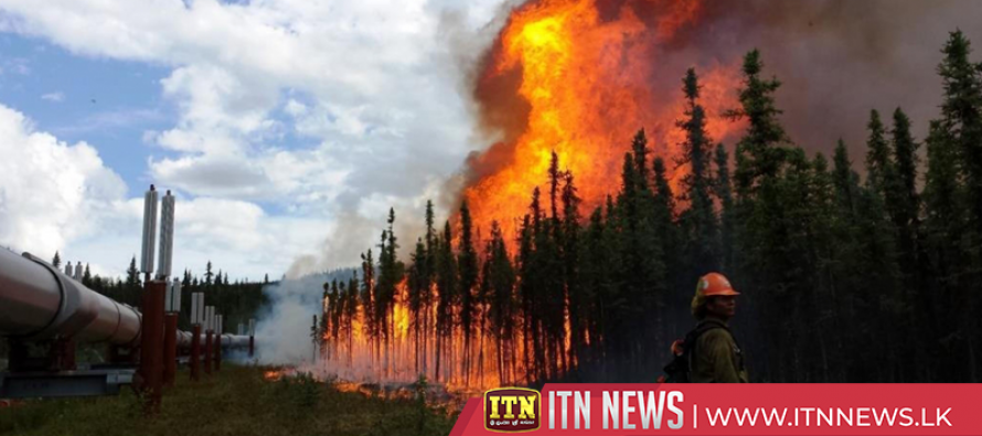 Newly formed wildfire burns in Washington state