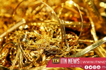 Indian arrested with 20 KG of gold