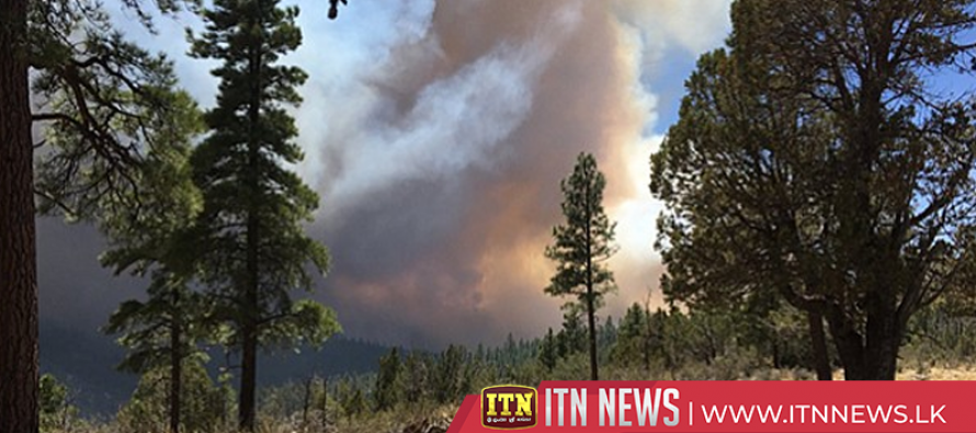 Fast-growing forest fire forces precautionary evacuations