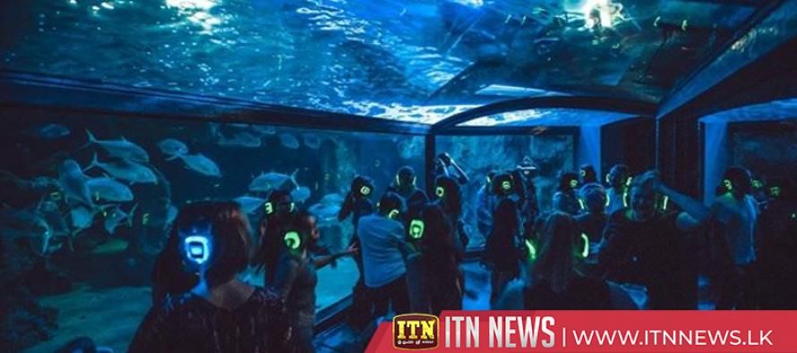 Clubbing reaches new depths with underwater dance floor