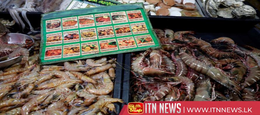 Big aquaculture bulldozes Borneo