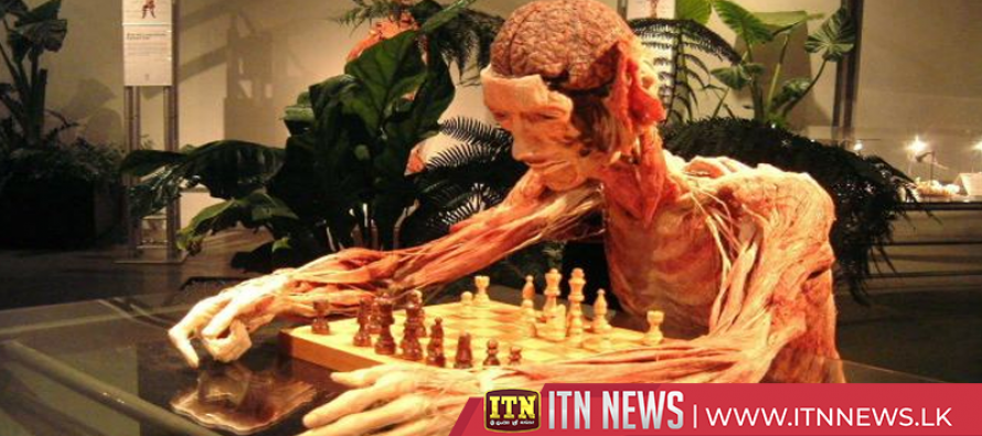 'Empowering' preserved bodies exhibit finds London home