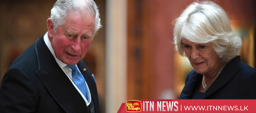 """""""Rebel"""" Prince Charles could put monarchy at risk, author says"""