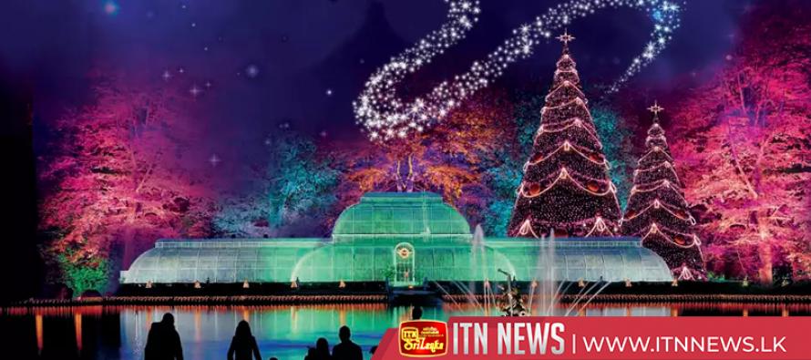 London's Kew Gardens sparkles for festive season