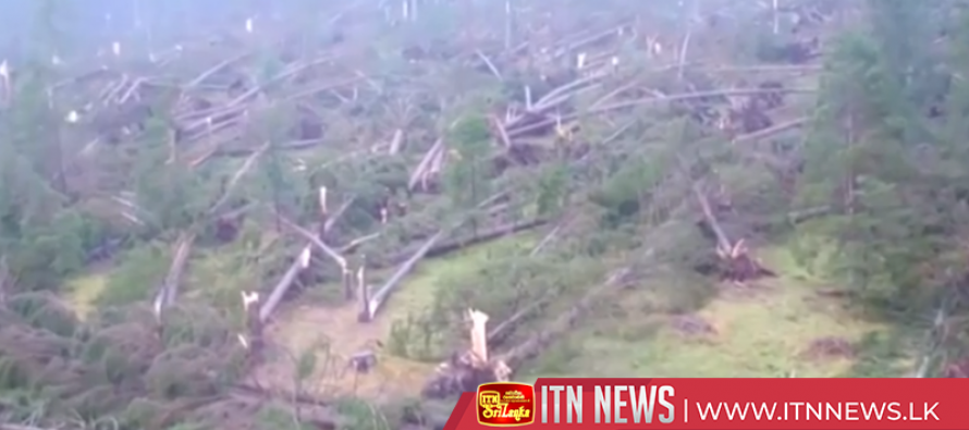 Thousands of trees razed by storm in north of Italy