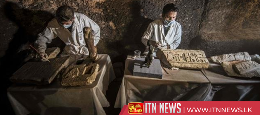 Ancient Egyptian tombs yield rare find of mummified scarab beetles