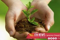 10 இலட்சம் மரக்கன்றுகளை நடும் தேசிய வேலைத்திட்டம் இன்று முற்பகல் ஆரம்பம்