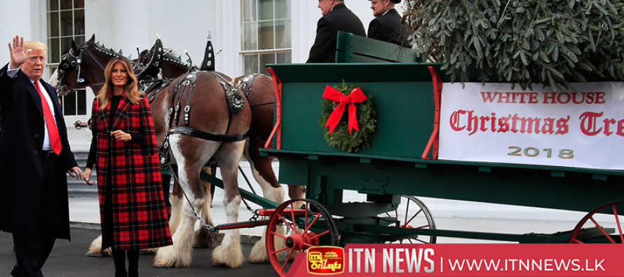 Trump, First Lady, welcome official White House Christmas tree