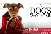 """A Dog's Way Home"" set to be released next month"