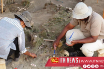 Skeletal remains of Mannar mass grave sent to the US