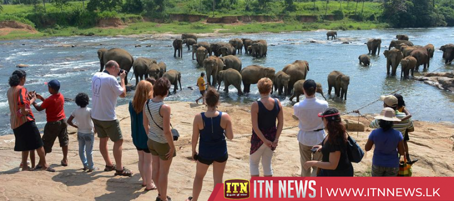 More tourists at Pinnawala Elephant Orphanage
