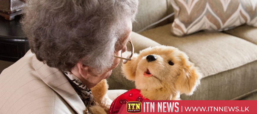 Robot animals serving as pets for dementia patients