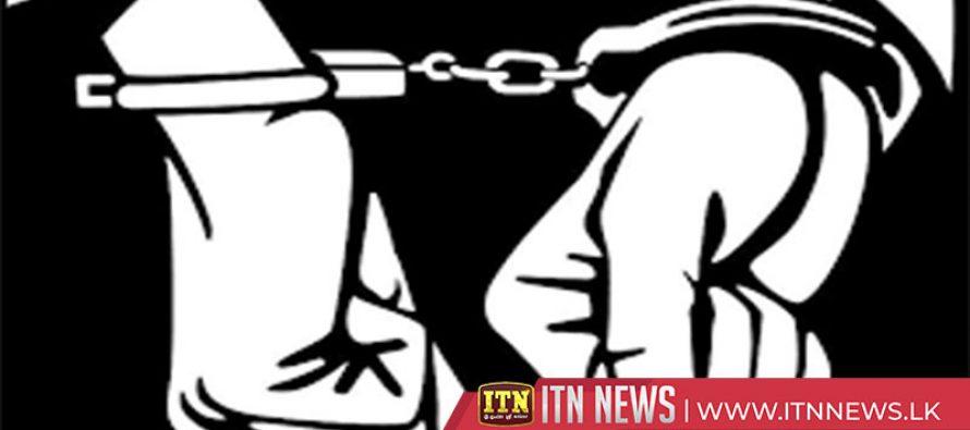 சட்டவிரோதமாக மாணிக்க கல் அகழ்வில் ஈடுபட்ட 7 பேர் கைது