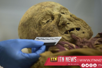 Ecuadoran mummy could shed light on history of diseases