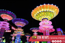 Lantern show lights up nights of south China city for upcoming Spring Festival