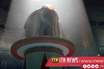"""Dumbo"" Released today"