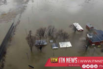 Livestock among victims of Midwest flooding