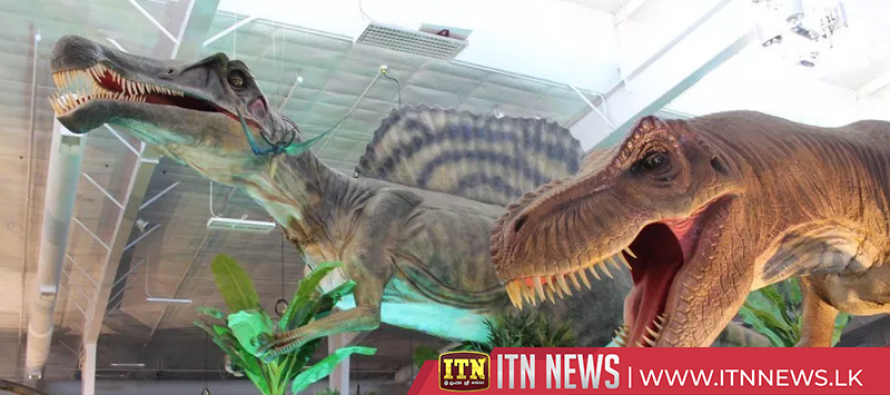 Washington dinosaur exhibit brings new life to prehistoric fossils