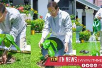 President calls on the public to plant a sapling and fulfil their responsibility