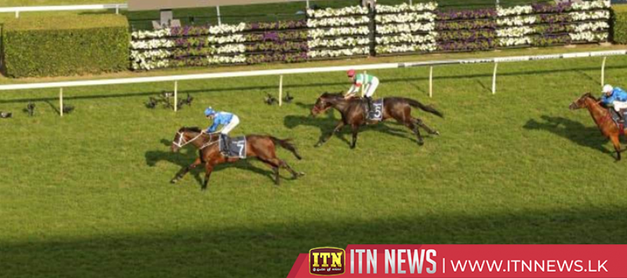 Winx, Australia's favourite horse, ends fairytale career winning final race