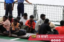 41 illegal immigrants arrested