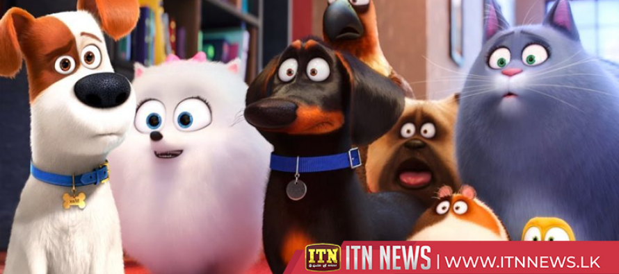 """The Secret Life of Pets 2"" schedule to be released next month"
