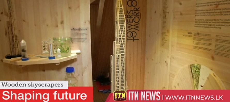 Wooden skyscrapers could shape future cities
