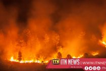 Wildfires burn nearly 500,000 hectares in Bolivia