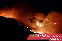 Wildfire rages in Canary Islands