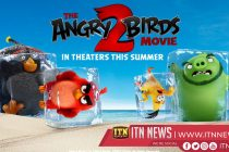 """""""The Angry Birds Movie 2"""" will be released today"""