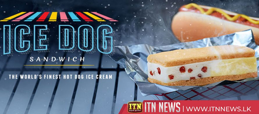 'Not as bad as you'd imagine' hot dog flavored ice cream in NY