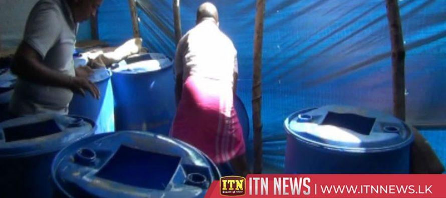 Number killed by consuming poisonous liquor rises