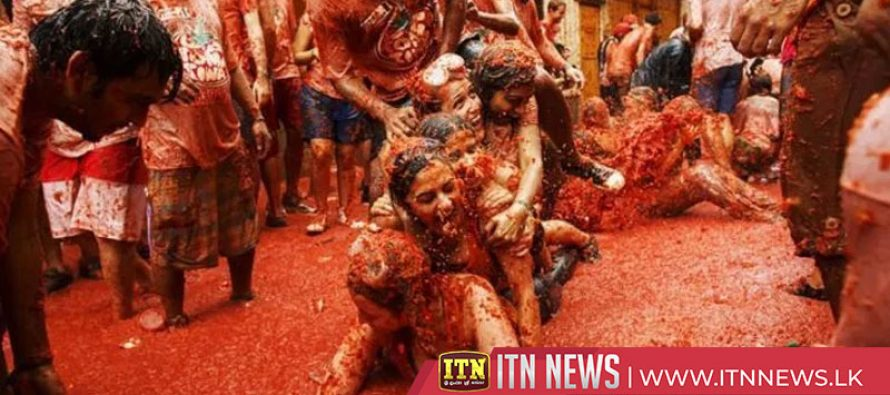Splat! Tonnes of tomatoes set to hit La Tomatina food fight festival