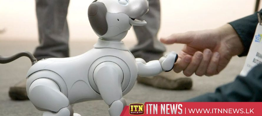 Creepy or cute? Tech fair exhibits robot companions for you and your dog