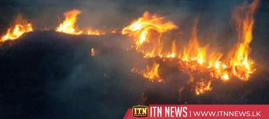 மதவாச்சி பகுதியில் ஏற்பட்ட தீயினால் 400 ஏக்கர் நிலப்பரப்பு நாசம்