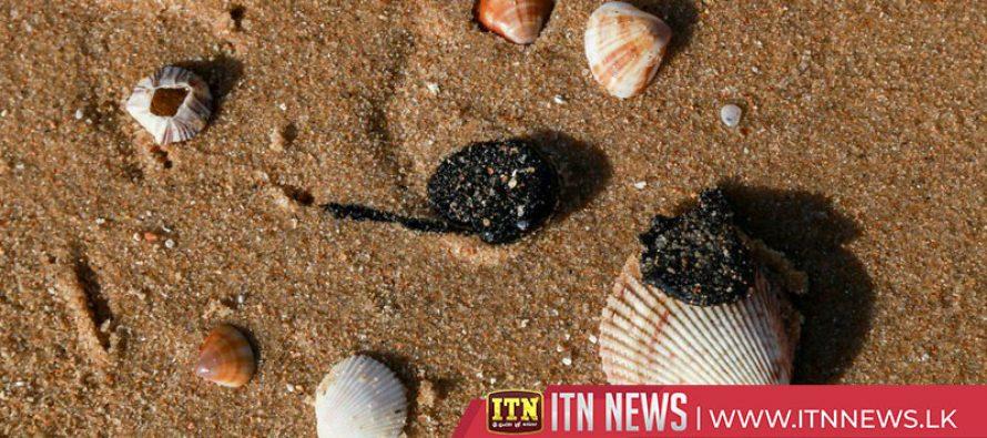 Oil spill blights Brazil's golden beaches