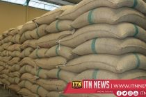 The Paddy Marketing Board says 42,000 metric tons of paddy will be issued to rice mill owners.