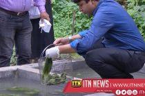 Algae filter makes dirty water drinkable