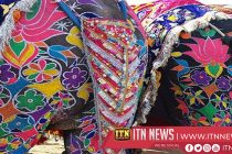 Muraled elephants with eyeliners participate in beauty pageant in Nepal