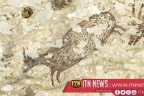 World's 'oldest artwork' uncovered in Indonesian cave: Study