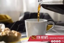 Scientists create beanless coffee for a more eco-friendly brew