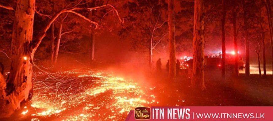 More than 200 homes burn down on coast