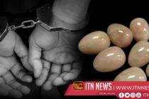 கஜ முத்துக்களை தம்வசம் வைத்திருந்த சந்தேக நபர்கள் 7 பேர் கைது