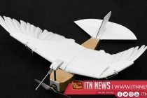 How this robot pigeon could inspire the future of flight